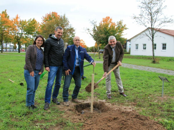 Baumpflanzung Hr. Dr. Wernicke